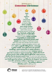 wishing you a conscious christmas